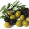 Полезные свойства оливок для организма