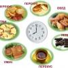 Как сделать свой рацион правильным чтобы быстро похудеть