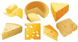 сыр популярный молочный продукт